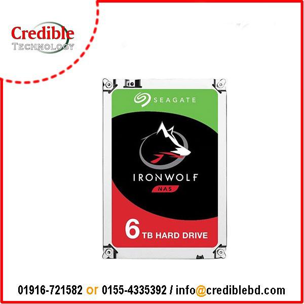 Seagate IronWolf 6TB